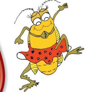 A festa dos insetos